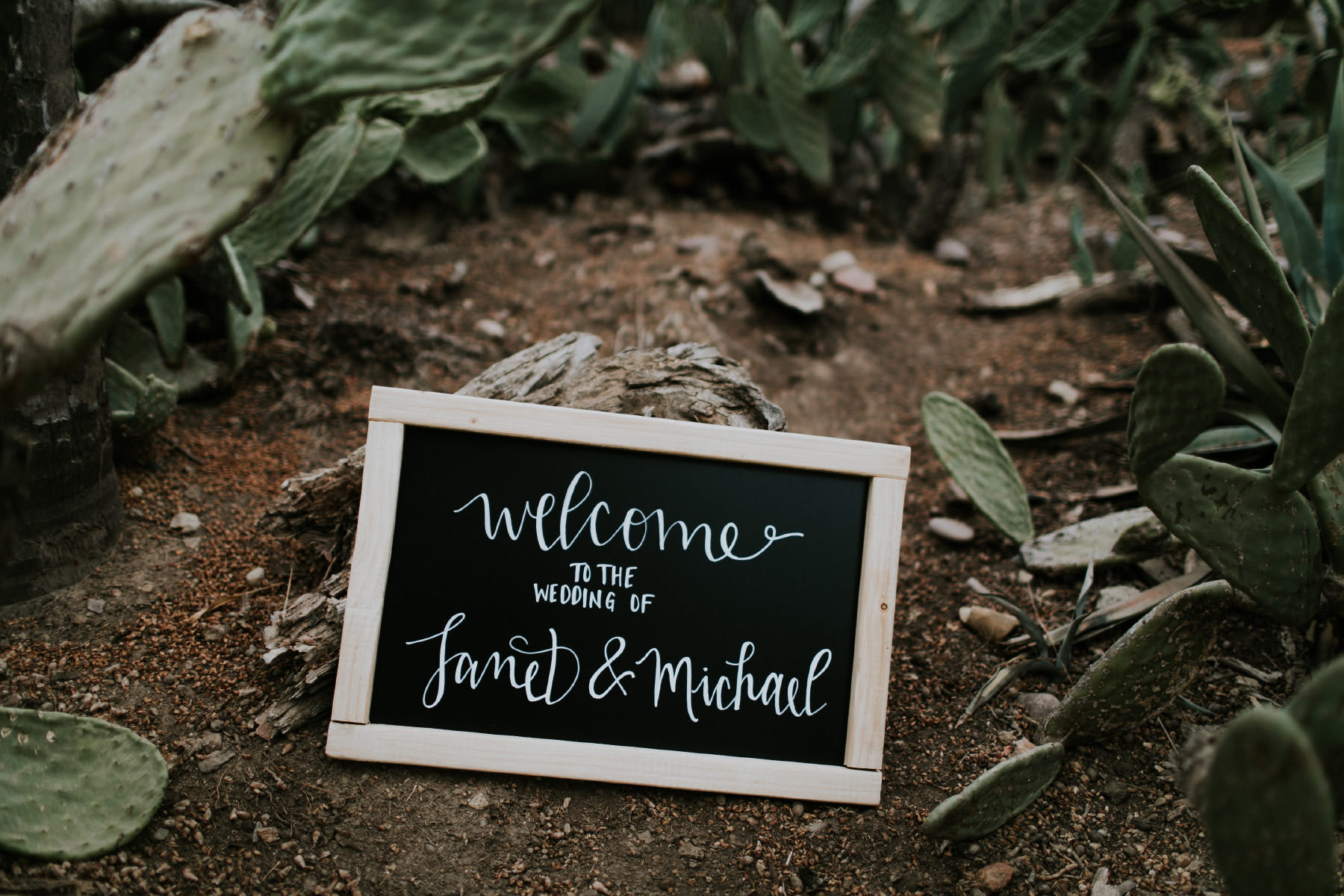 Welcome to the wedding of Janet and Michael