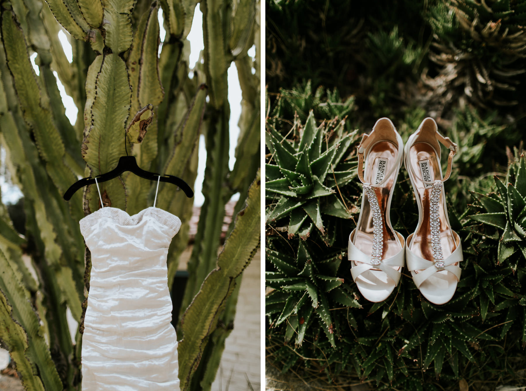 Wedding dress and shoes hanging from cactus at Leo Carrillo Ranch