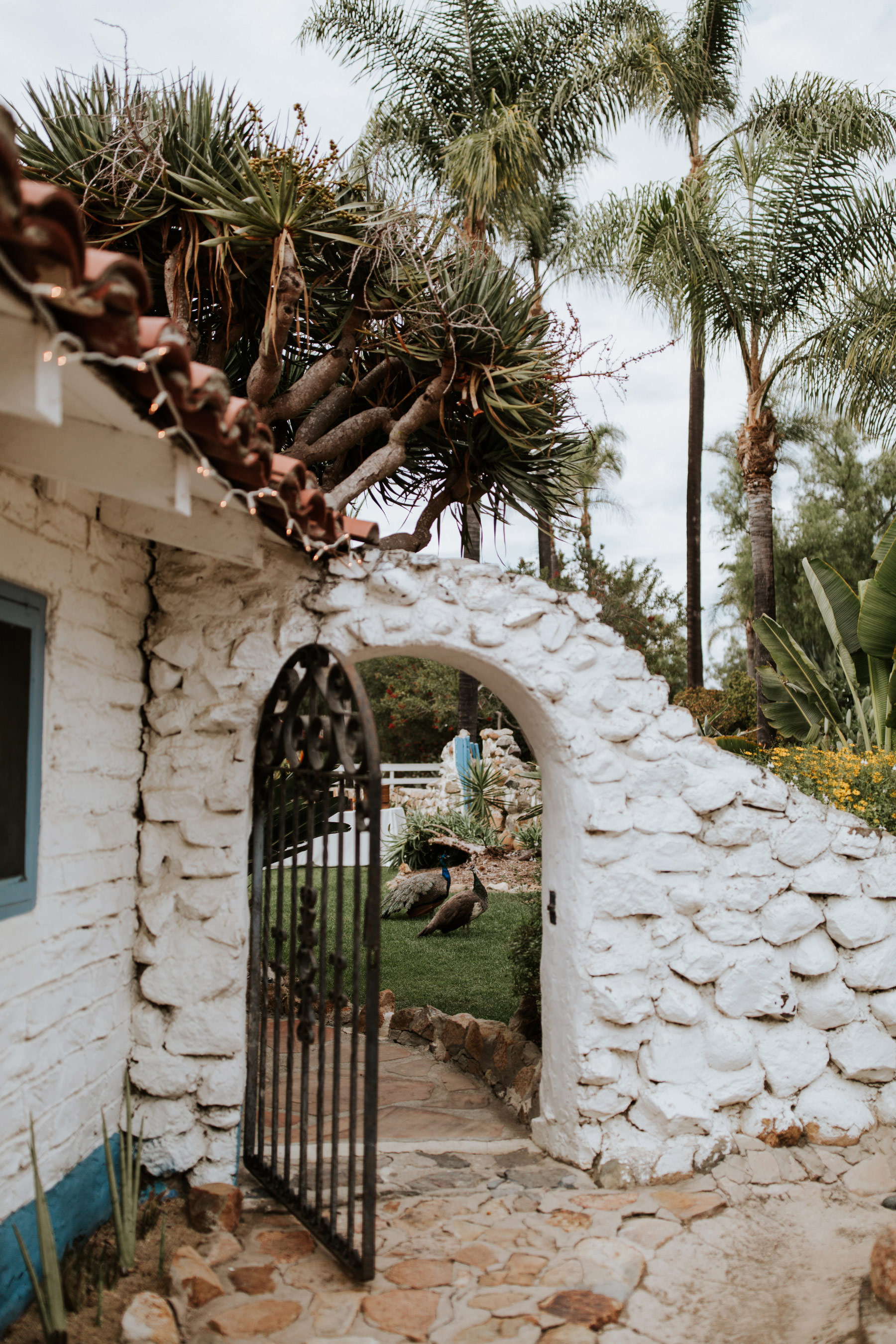Open gate with peacocks at Leo Carrillo Ranch wedding