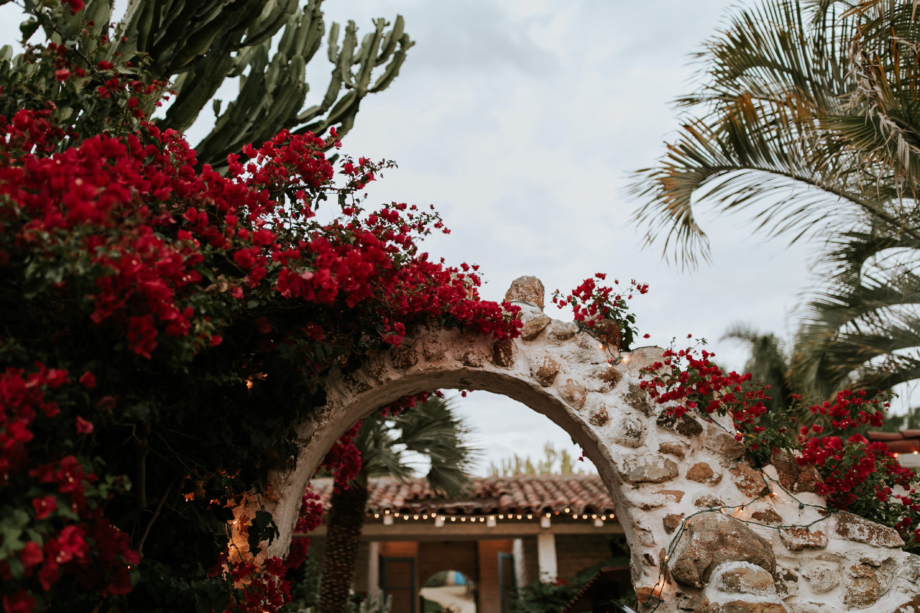 Bougainvillea growing over an archway at Leo Carrillo Ranch