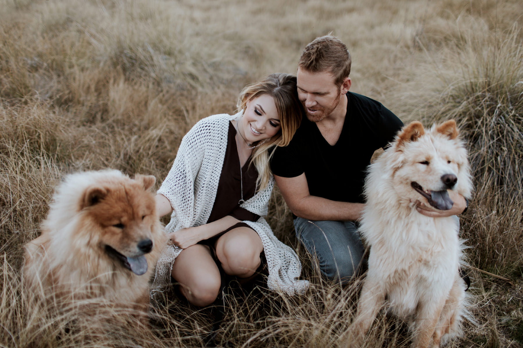 Engaged couple cuddling in a field at Palomar Mountain with two Chow Chow dogs