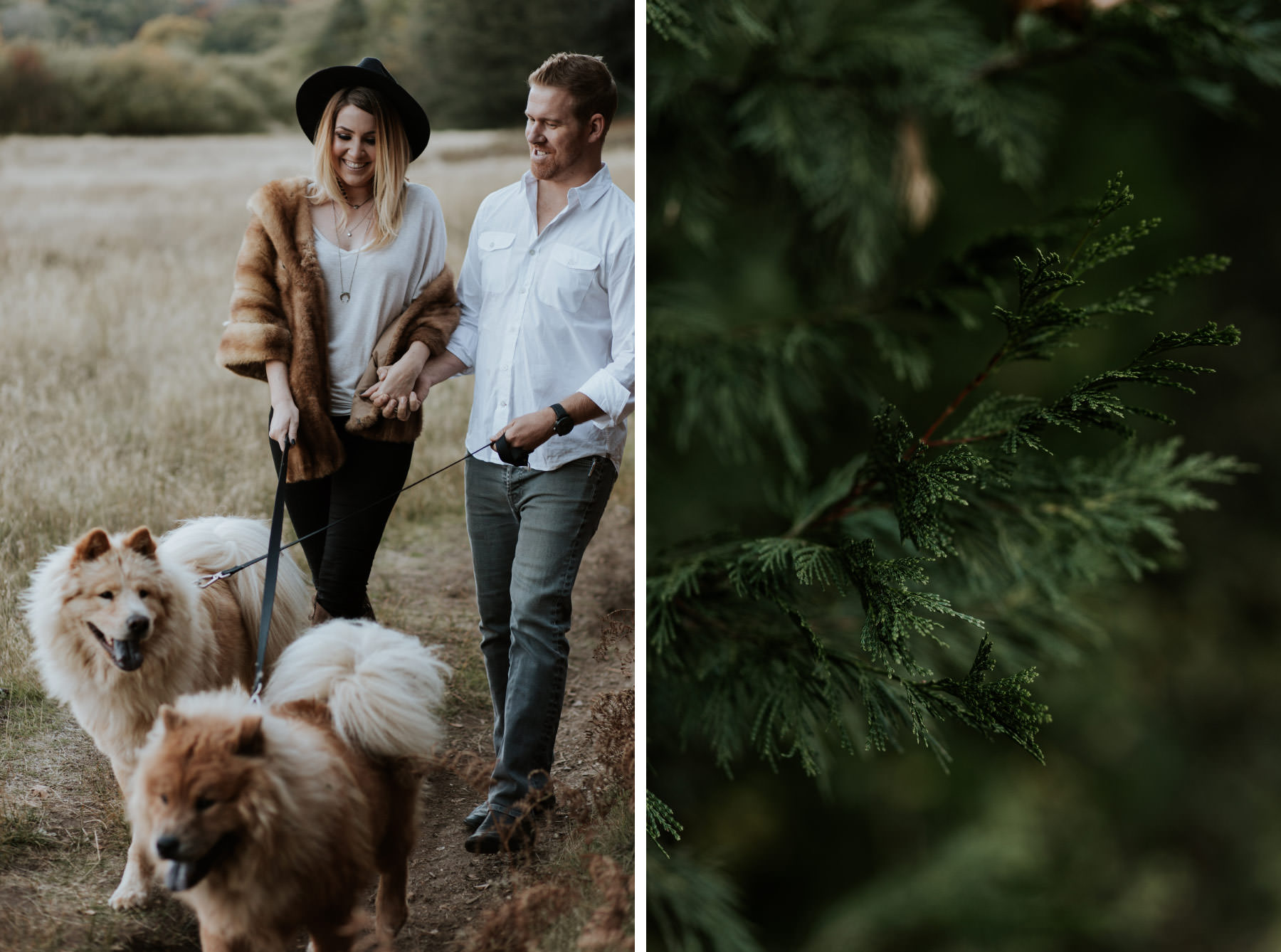 Couple walking two dogs at Palomar Mountain engagement
