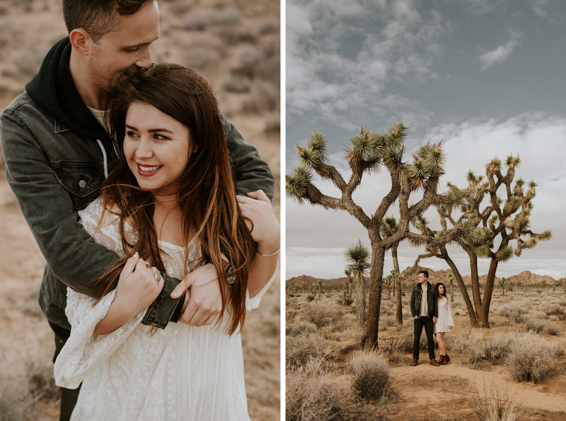 Engaged couple posing in front of a huge Joshua tree