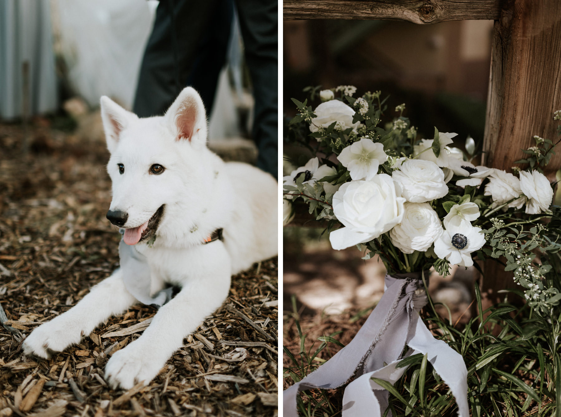 White wolf dog and wedding bouquet