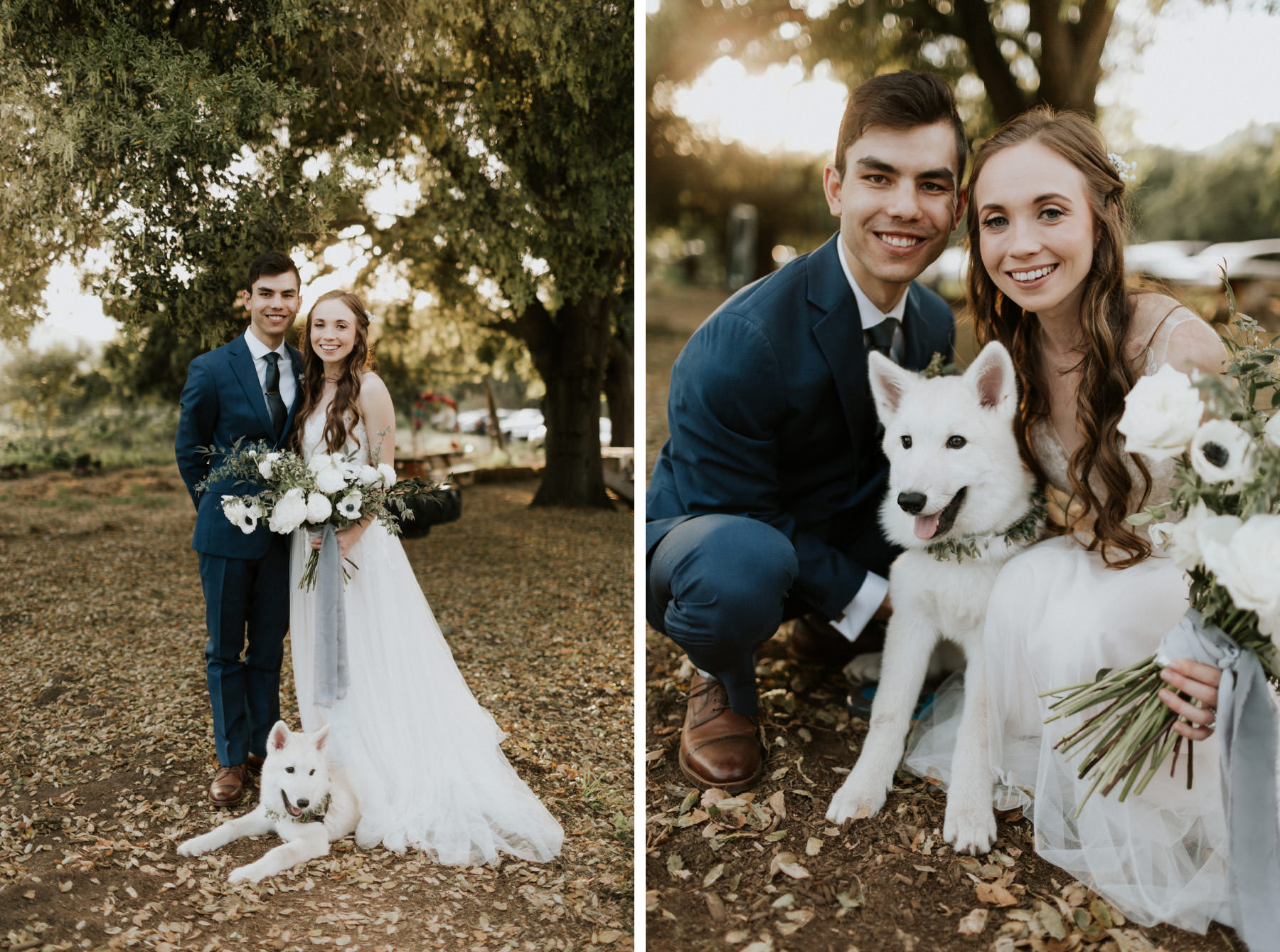 Bride and groom with white wolf dog puppy